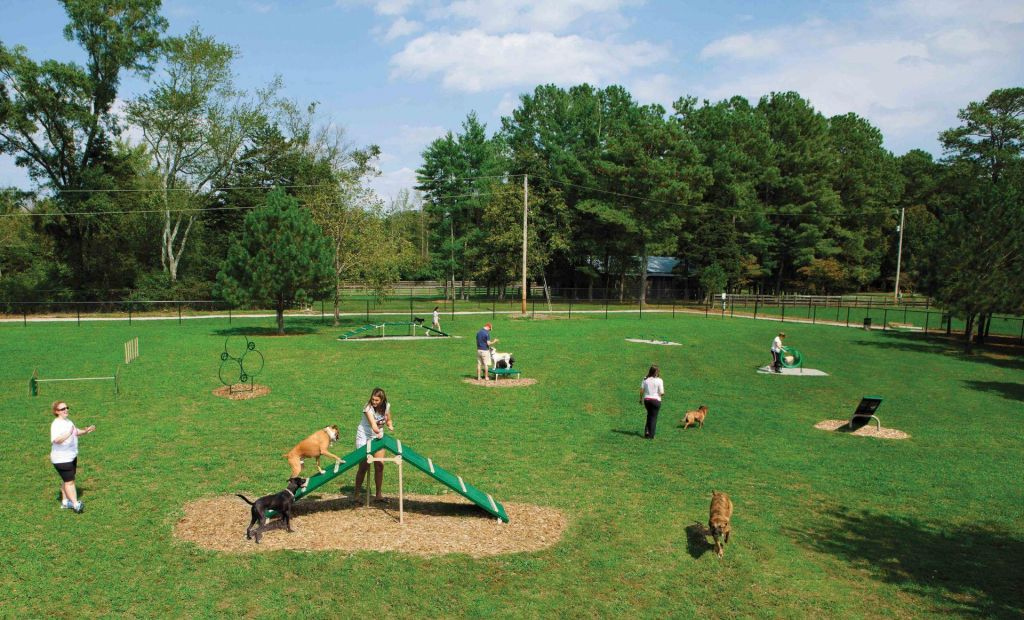 4 Benefits of Dog Parks in Communities