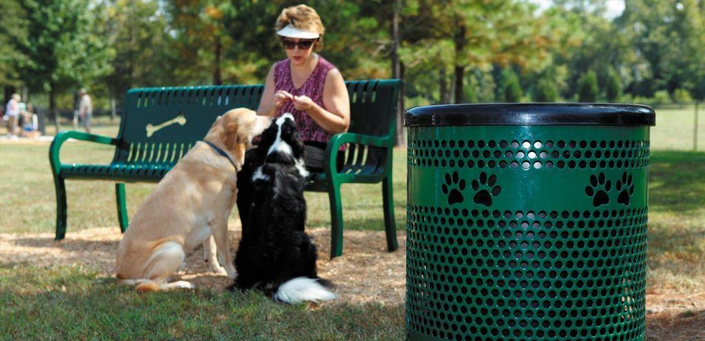 Dog-park-equipment-image.jpg#asset:10866
