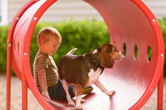 Dog-with-Kid_Image-Grid.jpg#asset:5436