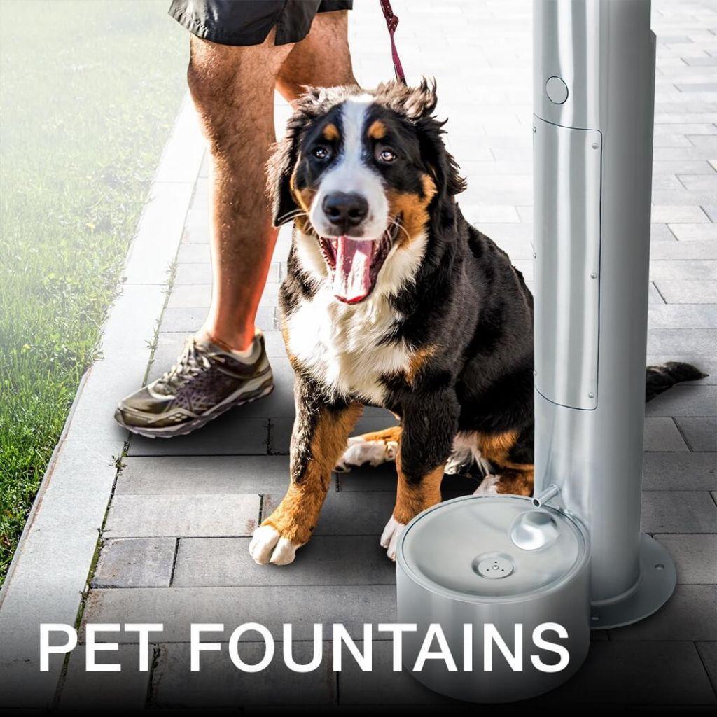 pet-fountains.jpg#asset:8471