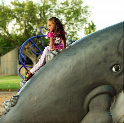 wally-whale-9630-1494412870-c50373564876d11c54b1bbc28dd3bf74.jpg#asset:5095
